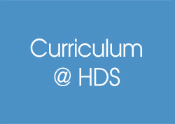 Column Widget   curriculm