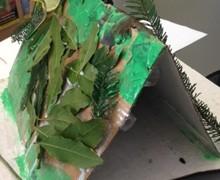 Lockdown bird boxes (2)