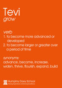 Tevi Definition